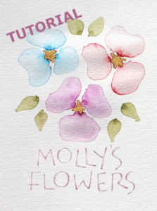 Molly's flowers